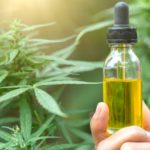 How Cannabis Oil or CBD Works with Prescription Medications