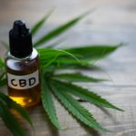 The Endocannabinoid System and CBD – Is There a Relationship?